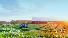 Покупка земли на Алтае под фермерское хозяйство