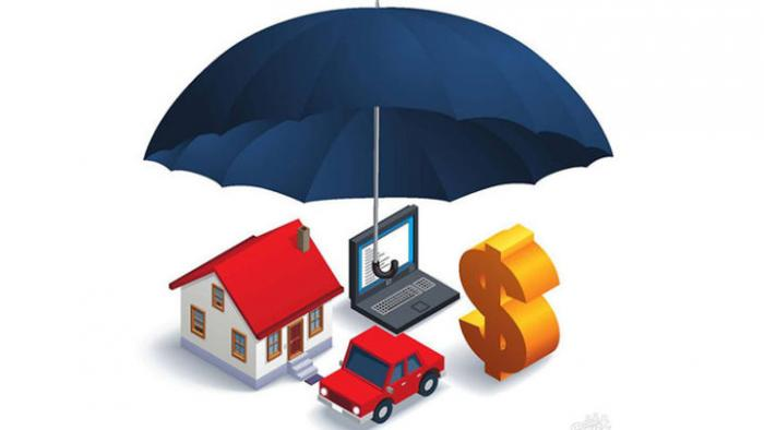 Надежные страховки без проблем