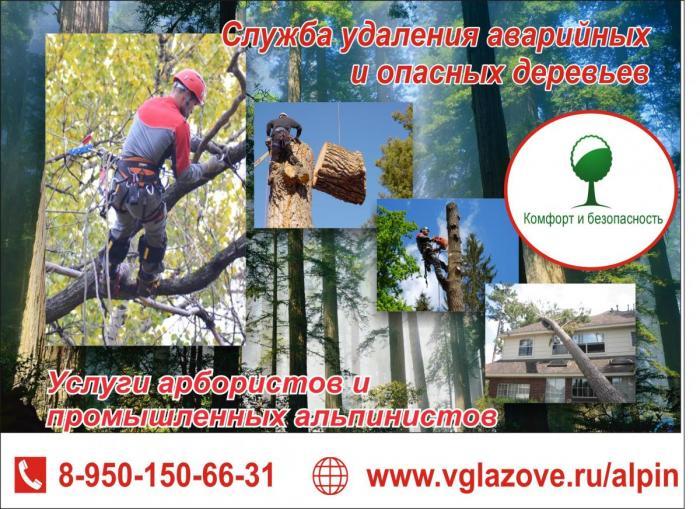 Глазов ПромАльп. Служба удаления аварийных и опасных деревьев